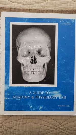 A guide to Anatomy and Physiology lab for Sale in Fontana, CA