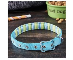Brand new dog collar M for Sale in Akron, OH