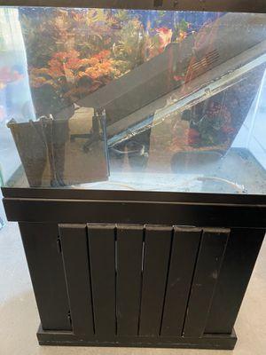 30 gallon aquarium/stand/accessories for Sale in Clovis, CA