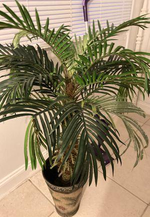 Silk palm trees for Sale in Deerfield Beach, FL