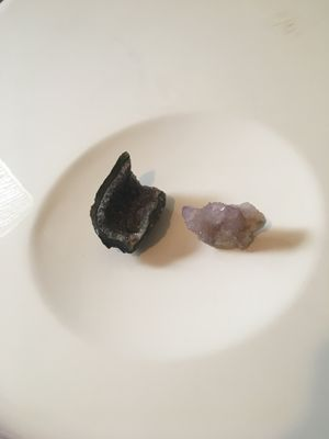 Starter Crystals (Common & Exotic blend) for Sale in Missouri City, TX