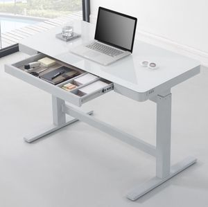 Electric Standing Desk - USB Chargers (8 Available) for Sale in San Diego, CA