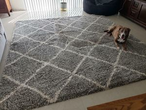 FREE Large Gray Rug for Sale in Palm Bay, FL