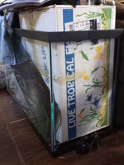 Fish Tank With Alot Of Extra for Sale in Tampa,  FL
