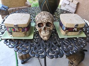 Faux snake skin candles and skull for Sale in Las Vegas, NV