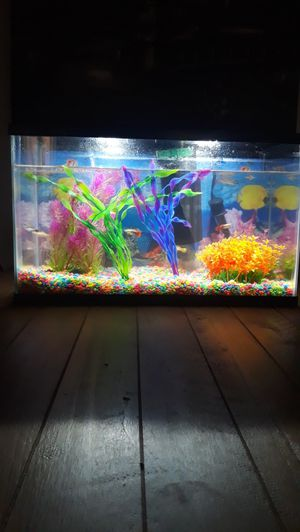 10 gallon fish tank aquarium for Sale in Colton, CA