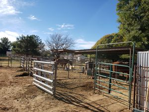 Horse boarding for Sale in Queen Creek, AZ