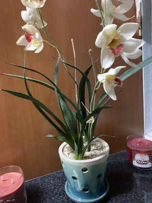 Orquídea artificial con base de cerámica. Precio firme for Sale in Hialeah, FL