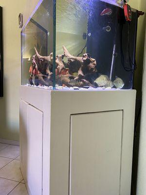 85 g aquarium for Sale in Garden Grove, CA