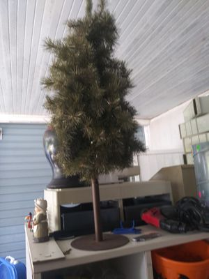 Tree for Sale in Lake Worth, FL