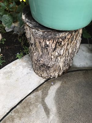 Three wood trunks for Sale in Placentia, CA