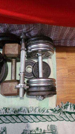 Adjustable dumbbell set for Sale in Ruskin, FL