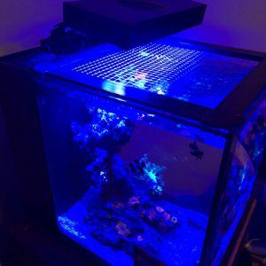 Aquarium for Sale in Edgewood, FL