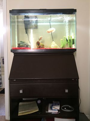30 Gallon Fish Tank, Filter, Rocks, Ornament, Top W/ Light, & Stand for Sale in Atlanta, GA
