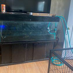Fish Tank 100 Gallon for Sale in Compton,  CA