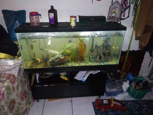 Fish tank for Sale in Ruskin, FL