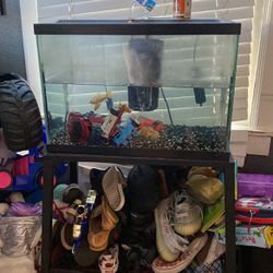 Fish Tank Free for Sale in Tracy,  CA