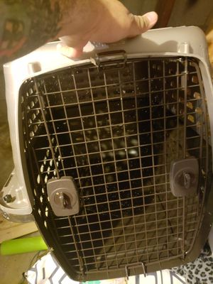 Dog crate for Sale in Waltham, MA