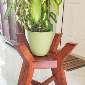 Table Missing Glass Used As Plant Holder for Sale in Miami, FL