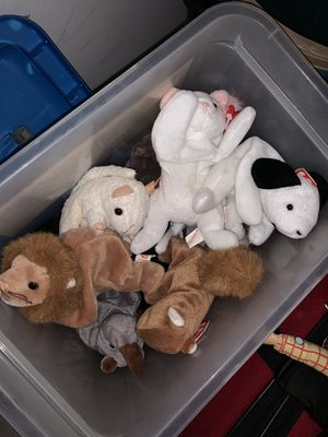 Beanie babies for Sale in Plantation, FL