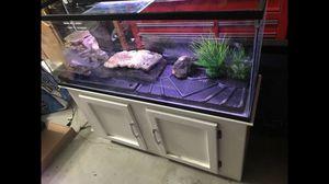 50 gallon tank for Sale in Union City, CA