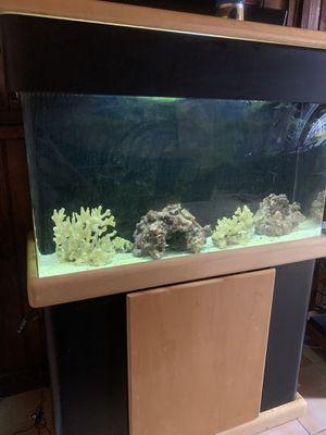 Salt water fish tank 40 gallon for Sale in Lake View Terrace, CA