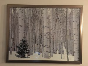 Artwork/ framed picture for Sale in Scottsdale, AZ