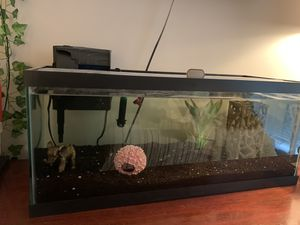 20 GALLON FISH TANK for Sale in Bellevue, WA