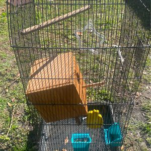 Bird Cage for Sale in Bowling Green, FL