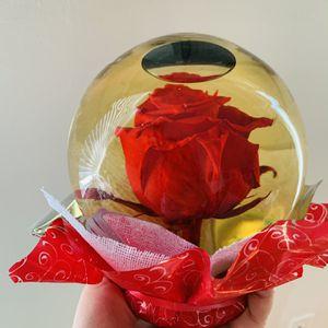 Red Rose In Glass Globe for Sale in Pasadena, CA