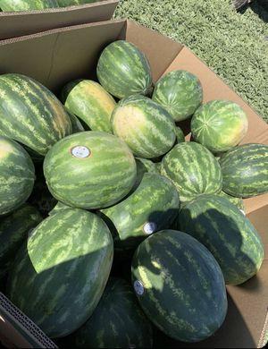 Watermelon 🍉 for Sale in Stockton, CA