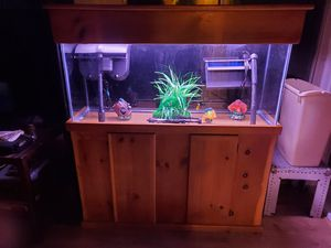 Like new 55 gallon fish tank aquarium complete setup with the stand and canopy for Sale in Norfolk, VA