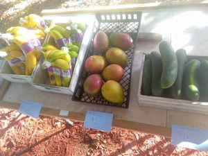 Fresh Produce! for Sale in Riverview, FL