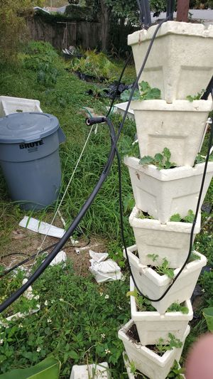 Outdoor hydroponic kit for Sale in NW PRT RCHY, FL