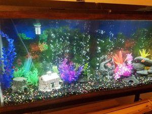 55 gallon aquarium for Sale in Eldon, IA