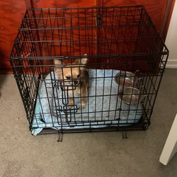 Small/medium Size Dog Kennel for Sale in Los Angeles,  CA