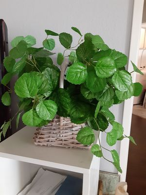 Fake plant in basket for Sale in Los Angeles, CA