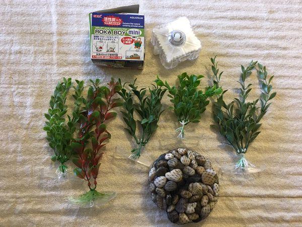 Aquarium plants, filter and rocks