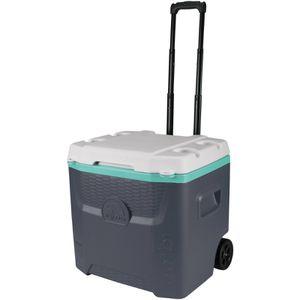 Igloo Quantum Cooler 52qt Roller for Sale in Denver, CO