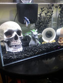 Tank for Sale in Los Angeles,  CA