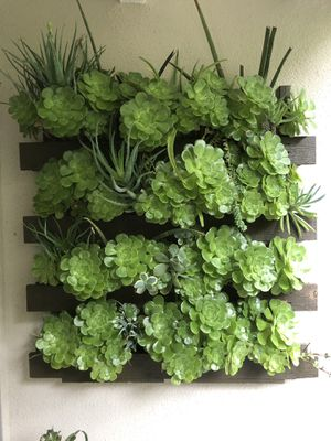 Pair of Large Living Plant Walls. 4ftx 4ft - Moving and must sell! for Sale in West Hollywood, CA
