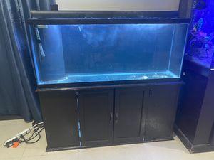 55 gallon saltwater aquarium reef fish tank for Sale in Miami, FL
