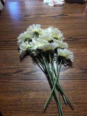 1 Dozen fake white long stem flowers for Sale in Fresno, CA