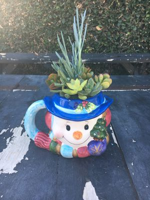 Christmas succulent plants for Sale in Fullerton, CA