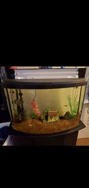 36G Bow Front Tank for Sale in Las Vegas, NV