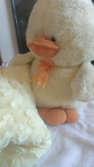 Soft warm Sherpa yellow throw twin size and cutest baby yellow chick. for Sale in North Las Vegas, NV