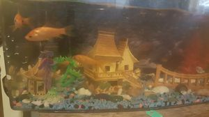 Fish tank with 7 gold fish for Sale in Pittsburgh, PA