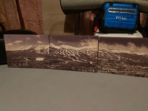 Wrapped canvas set of 3 mountain lodge art for Sale in Cheshire, CT