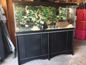 55 gallon aquarium plus stand for Sale in Chicago, IL