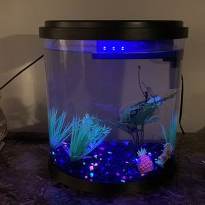 3.5 gal Top Fin Fish Tank for Sale in Depew, NY